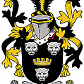 Gindon Coat Of Arms Irish by Heraldry