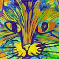 Ginger Kitty by Michelle Calkins