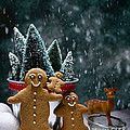 Gingerbread Family In Snow by Amanda Elwell