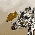 Giraffe And Friend by Robert Schwarztrauber