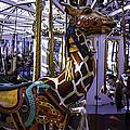 Giraffe Carousel Ride by Garry Gay