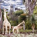Giraffe Family by Photographic Art by Russel Ray Photos