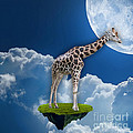 Giraffe Flying High by Marvin Blaine