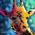 Giraffe by Marlene Watson