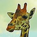 Giraffe by MTBobbins Photography