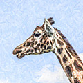 Giraffe Portrait by Liz Leyden