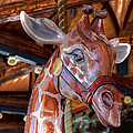 Giraffe Ride by Lynn Sprowl