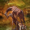 Giraffe World by Carol Cavalaris
