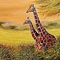 Giraffes Watching by Wycliffe Ndwiga
