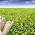 Girls Feet On Grass With Flowers by Vast Photography