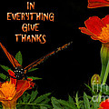 Give Thanks by Lydia Holly