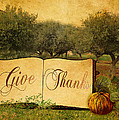Give Thanks by Sarah Vernon