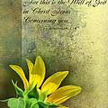 Give Thanks V by Debbie Portwood