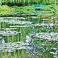 Giverny by Olivier Le Queinec