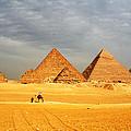 Giza by Sheryl Chapman Photography