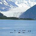 Glacier 10 by Lew Davis