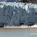 Glacier Bay Alaska by Sophie Vigneault