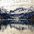 Glacier Bay Landscape - Alaska by Jon Berghoff