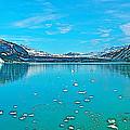 Glacier Bay National Park-alaska by Ruth Hager