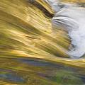 Glacier Stream Glacier National Park by Rich Franco