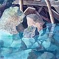 Glacier Stream Rocks by Teresa Ascone