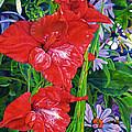 Gladiola And Echinacea by Morgan  Ralston