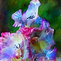 Gladiolus Floral Art by PM Staab