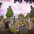 Glasnevin Cemetery by Alex Art and Photo