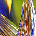 Glass Abstract 743 by Sarah Loft