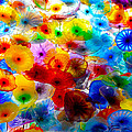 Glass Flowers by Tracy Winter