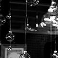 Glass Ornaments by Scott Hill