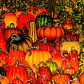 Glass Pumpkins by Louis Dallara