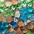 Glass Seashell by Tikvah's Hope
