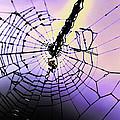 Glass Threads by Joe Bledsoe