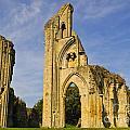 Glastonbury Abbey by Lana Enderle