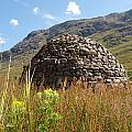 Glen Coe Hive by Michaela Perryman