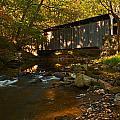 Glen Hope Covered Bridge by Michael Porchik