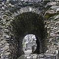 Glenluce Abbey - 3 by Paul Cannon