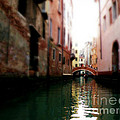 Gliding Along The Canal  by Micki Findlay