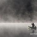 Gliding Through The Mist by Barbara McMahon