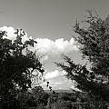 Glimpses Of Heaven by Nina Fosdick