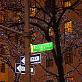 Glistening Branches On The Plaza by Terry Wallace