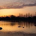 Gloaming - Subtle Pink Lavender And Orange At The Lake by Georgia Mizuleva