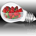 Global Strawberries by Kaye Menner