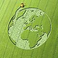 Globe Crop Circle In Green Field by Jon Berkeley