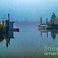 Gloomy Morning by Nick Zelinsky