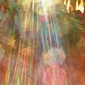 Gloria Catchin' Rays by Aliceann Carlton