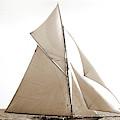 Gloriana, Corinthian Sweepstakes, Corinthian Yacht Club by Litz Collection