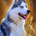Glorious Pride - Siberian Husky Portrait by Lourry Legarde
