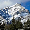 Glorious Rockies by Bianca Nadeau